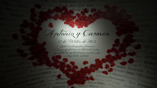 video-de-boda-en-jerez-photocall-antonio-y-carmen